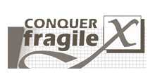 Foundation Conquer X Fragile